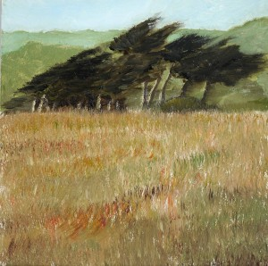 Oil 2015 Sea Ranch Windbreak