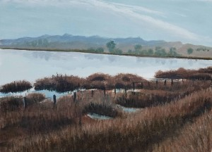 Oil 2015 Shollenberger Grasses